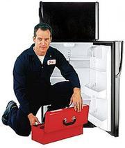ремонт холодильников кировоград. Ремонт Холодильника в Кировограде