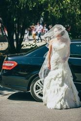 Продажа Свадебные платья Кировоград, купить Свадебные платья
