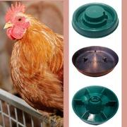 Поїлки і годівниці для птахів домашнього утримання